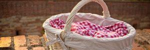 best picnic baskets